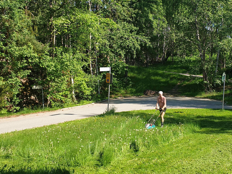 Huddinge M-vägen, gräsklippning, 6 juni 2021